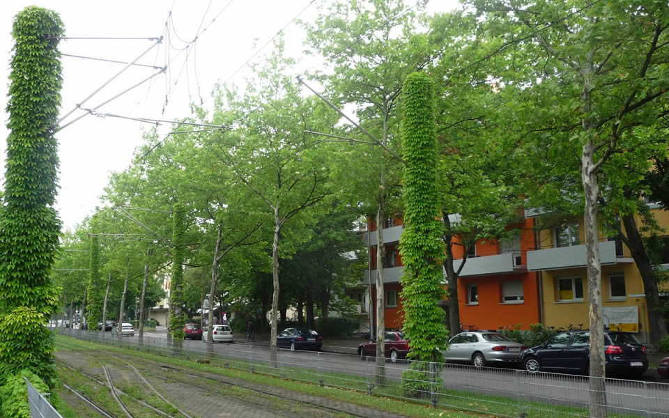 Freiburg - Euorpe's gree city taking green seriously