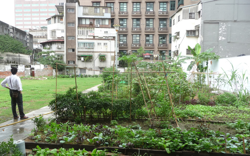 Taipei - Urban gardening & its restorative impacts